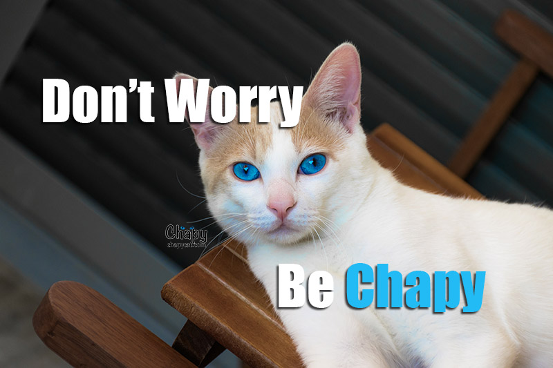 dont worry be chapy
