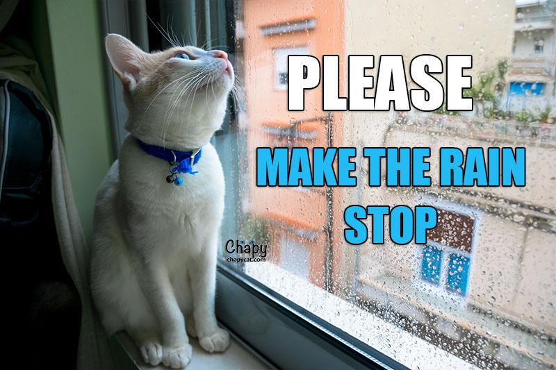 make rain stops