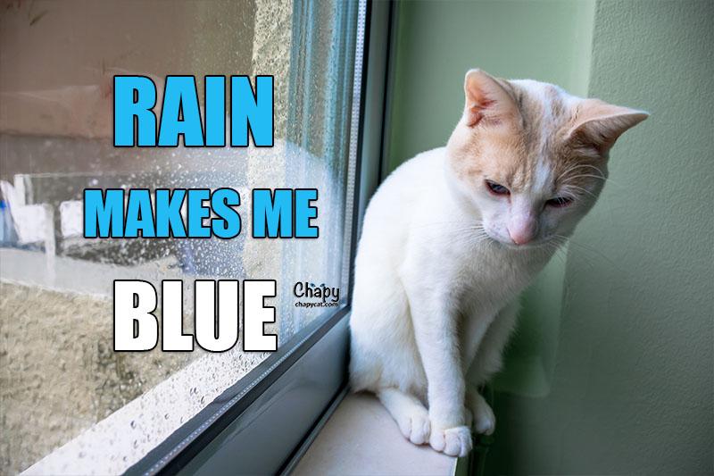 makes me blues