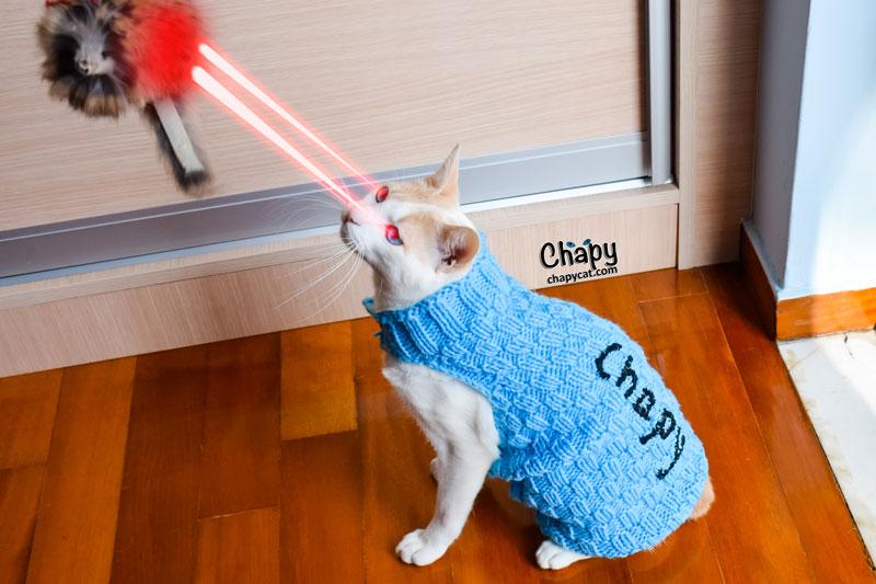 Laser-Mouse
