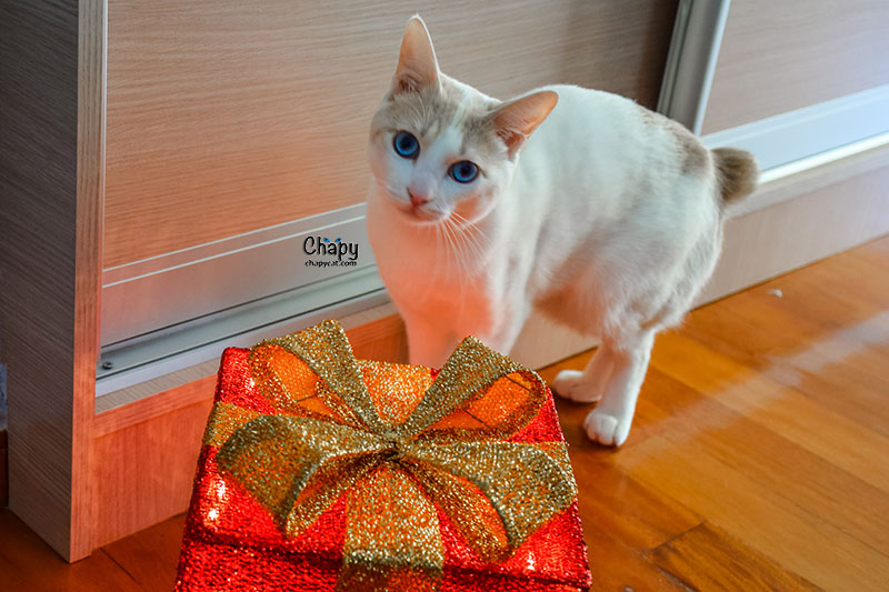 Is this present for me?