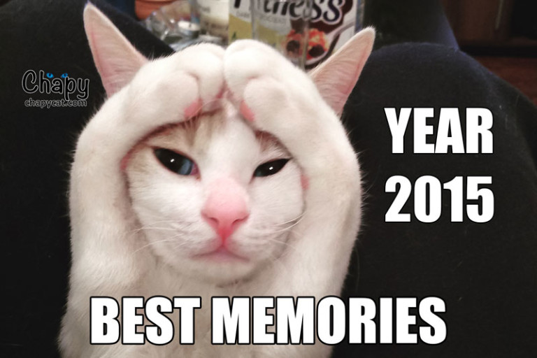Best Memories of Year 2015